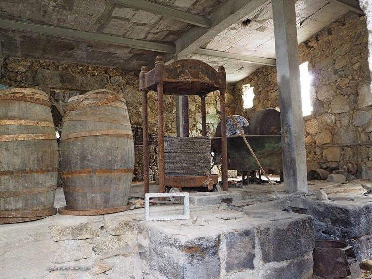 Onderweg kwamen we langs een oude niet meer in gebruik zijnde lagar (olijfperserij) De deuren waren op slot, maar ik kon mijn camera door een kapot raam steken en deze foto maken. De olijven worden