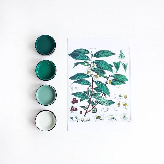 #mondaymood This gorgeous Botanical Green Tea vintage print sets the tones for…