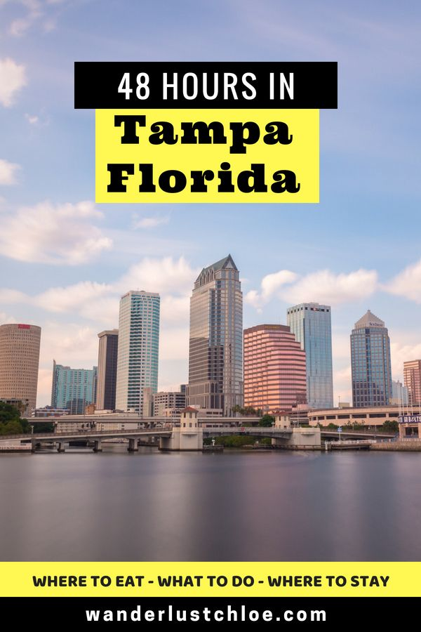 Read This Before Visiting Tampa Florida Travel Guide Favorite