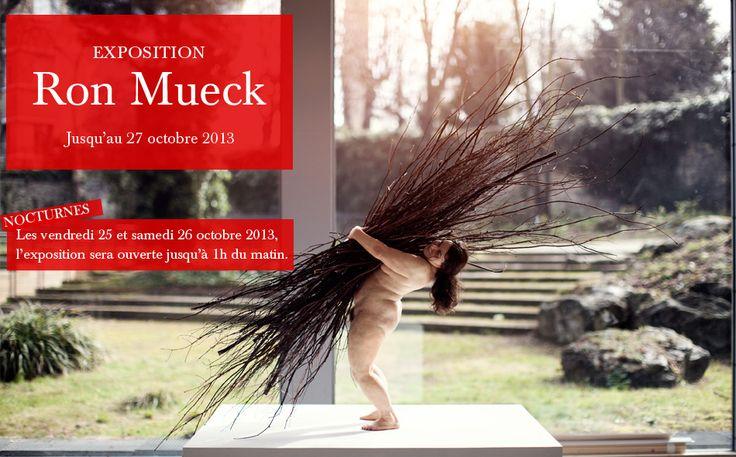 VUE Ron Mueck (Fondation Cartier pour l'art contemporain).