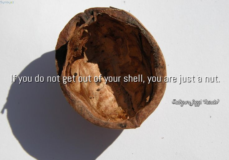 If you do not get out of your shell, you are just a nut. ~ Sadhguru Jaggi Vasudev.