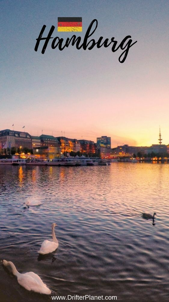 Sunset By Alster Lake With Swans – Things to do in Hamburg, Germany