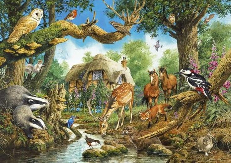 Woodland Creatures And Horses This Is Our Fantasy House