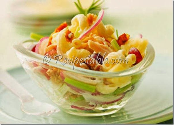 Chicken Pasta Salad Recipe by Chef Zakir - Recipes Table