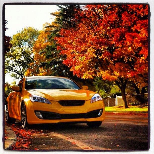333 Best Genesis Coupe Images On Pinterest: 132 Best Hyundai Images On Pinterest