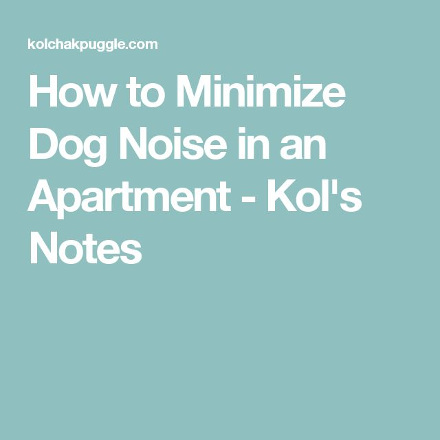How to Minimize Dog Noise in an Apartment - Kol's Notes