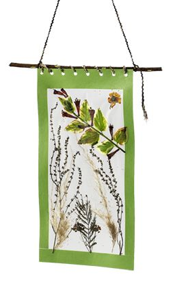 Take a nature walk and create a collage on self-adhesive clear contact paper