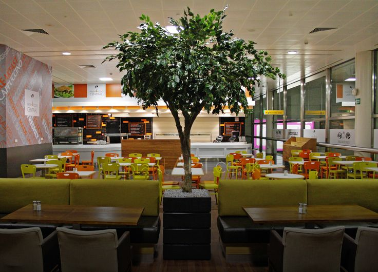 plantART Gallery :: Glasgow Airport Fake Tree