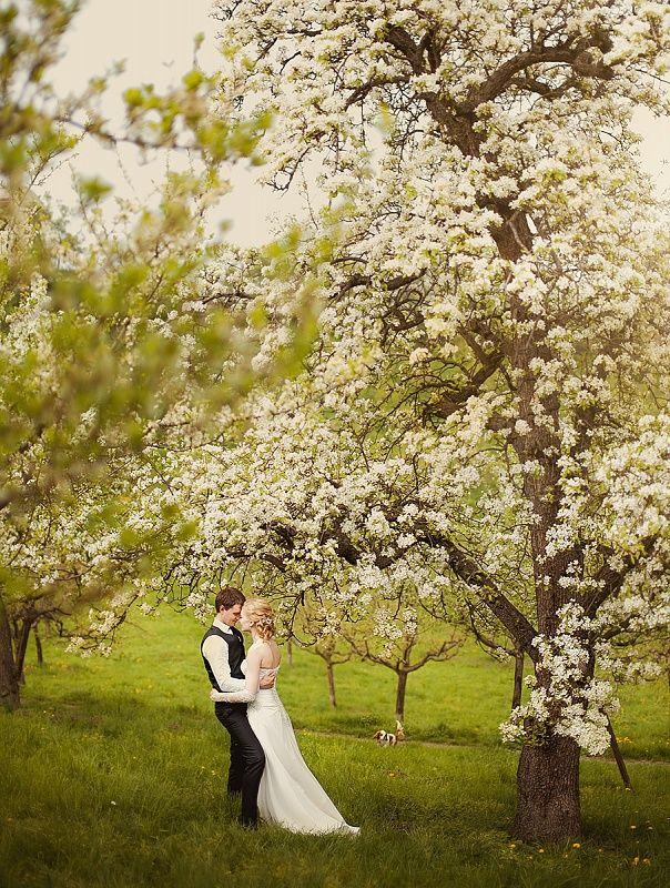 Wedding in Prague Photographer in Prague Prague wedding Czech wedding Wedding photographer in Prague More images at http://ovsyannikova.com