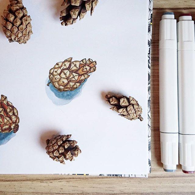 Утро. Суббота. Шишки. Разве это не прекрасное начало выходных? 🐱    #шишмоб #illustration #маркеры #скетч #sketchbook #sketch
