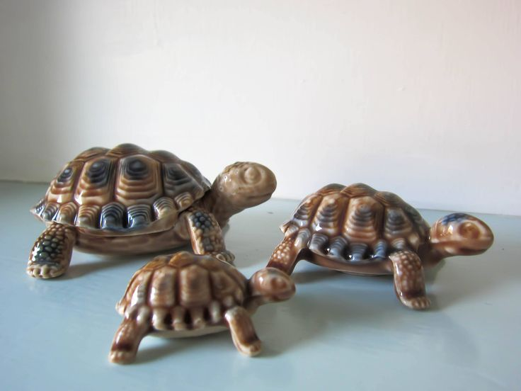 A family of three Wade Tortoises, wade whimsies tortoises, trinket box, 1960s collectible wade tortoise family. by thevintagemagpie01 on Etsy