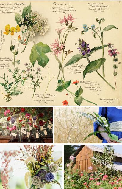 Eco and Elsie: A Place for Brides Who Love the Earth: Wildflower Weddings