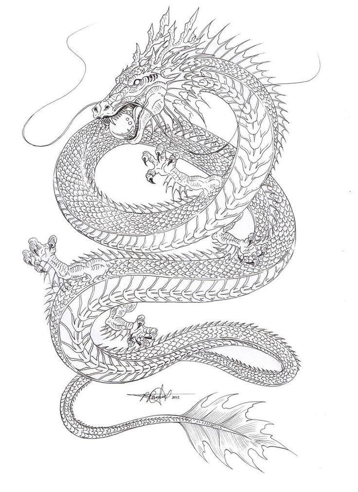 Water Dragon outline by ~artstain on deviantART