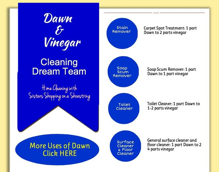 Dawn and Vinegar for a DREAM Cleaning Team! http://www.sistersshoppingonashoestring.com/tag/dawn