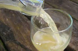 Il Kefir di acqua | www.puraaloevera.com