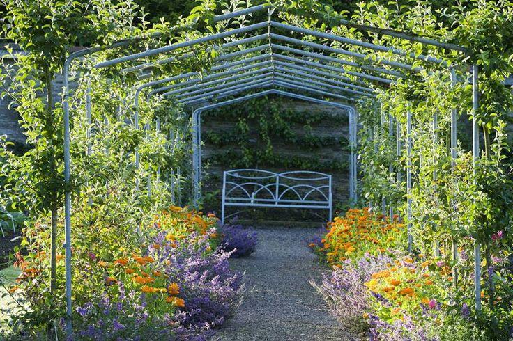 14 best gardening flower images on pinterest cgi for Garden design devon