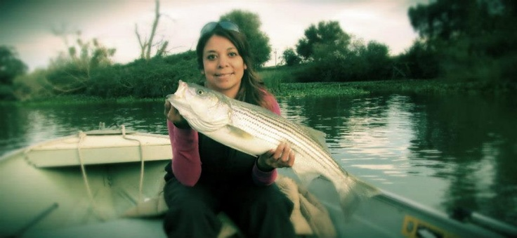 Tracy Oasis striper fishing