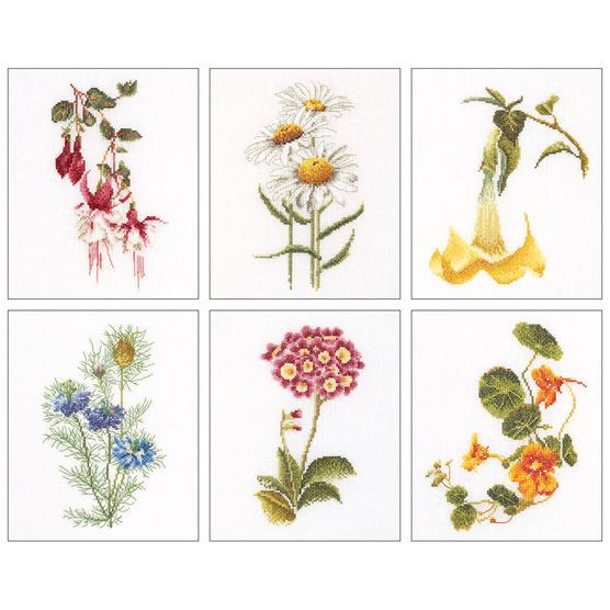 Infuse the beauty of flowers in hand-made artwork, when you use the Thea Gouverneur Floral Studies 4 On Aida counted-cross-stitch Kit Set of 6. Featuring a set of six floral designs in lovely multi-co
