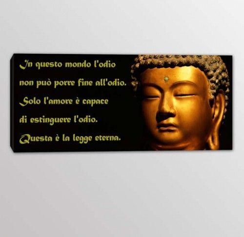 quadro moderno frase Buddha 4