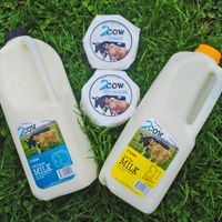 When it comes to producing quality milk, 2Cow Dairy is right up there with Australia's best practice. The taste of this milk will reflect the pristine conditions and minimal human intervention in the derivation of this product.