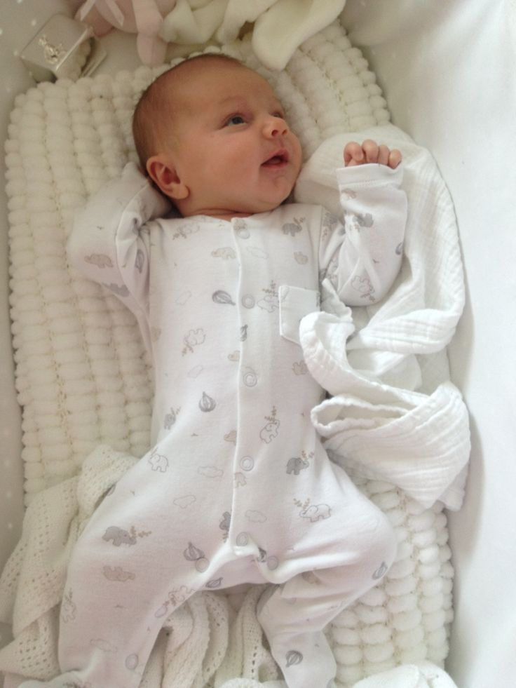 49 Best Moba Moses Basket S At Home Images On Pinterest