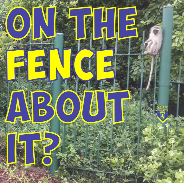 Are you on the Fence about which Fencing product you need? Contact us to talk about all of your Fencing needs! https://www.facebook.com/ObelixFencing/  #fencing #gate #cctv #wildmesh #diamondmesh