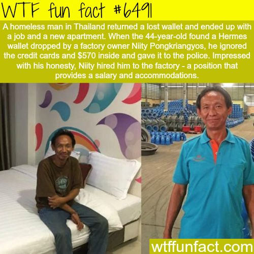 Homeless man returns a lost wallet, gets an apartment and a job - WTF fun facts