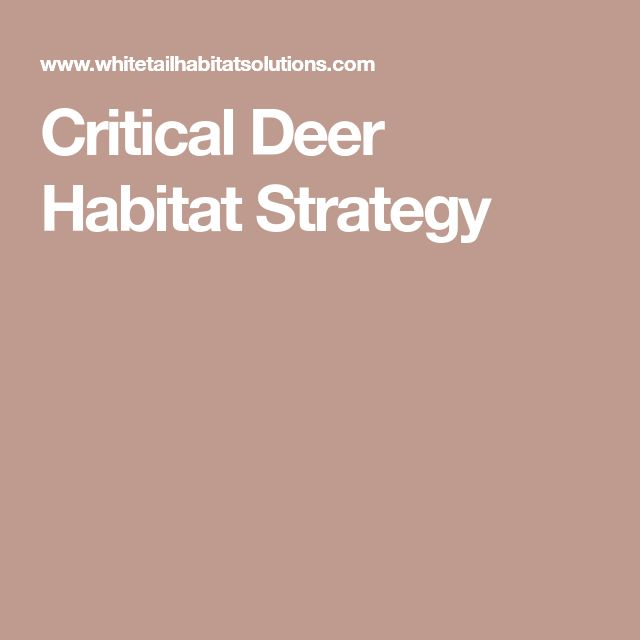 Critical Deer Habitat Strategy