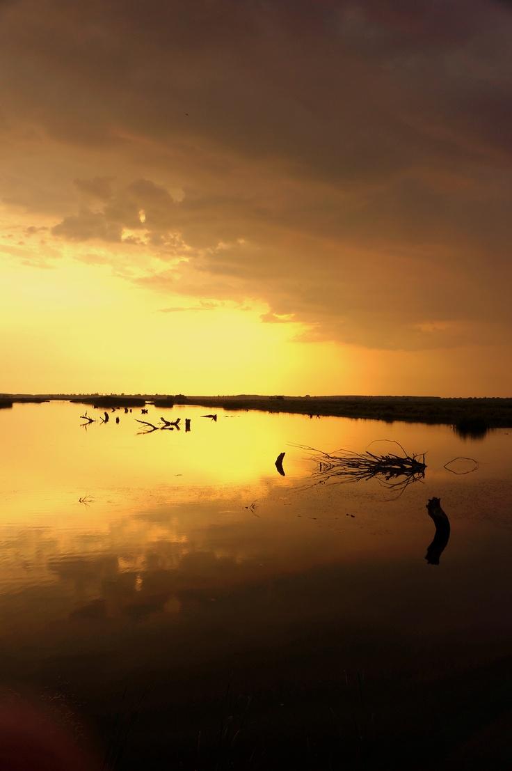 asfintit in delta