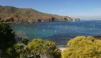 Little Harbor Campground | Two Harbors | Visit Catalina Island