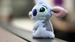 #Disney #Stitch #Plush: 626 Stitch, Disney Stuff, Disney Crazy, Disney Stitch, Disney Geekery, Stitch Plush, Disney Disney, Disney Pixar Other Animated, Things Disney