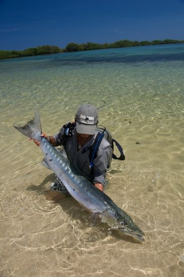 Barracuda on the fly on a flat - amazing!