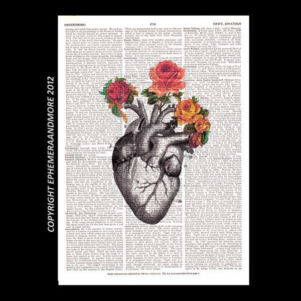 Dictionary print anatomical heart SWEET HEART vintage roses book page art print on dictionary art print love human heart 8x10, 5x7. $10.00, via Etsy.