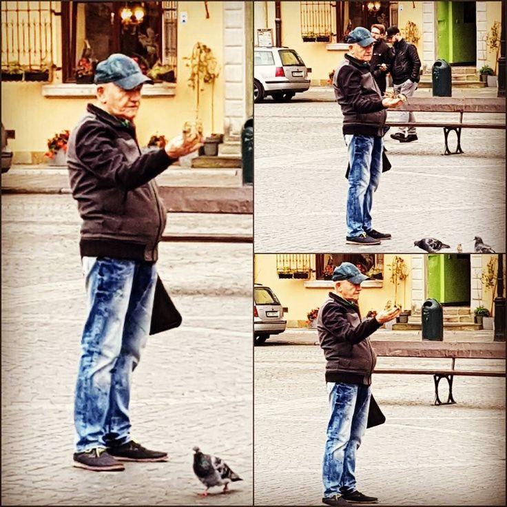Älskade hemstaden ... I #Warszawa även spårvar är vänliga och sällskapssjuka . Undrar hur många år kommer han till samma ställe för att träffa sina vänner? Är du i staden besök I torget på Starowka vid 11:00 tiden han kanske kommer att finnas där?
