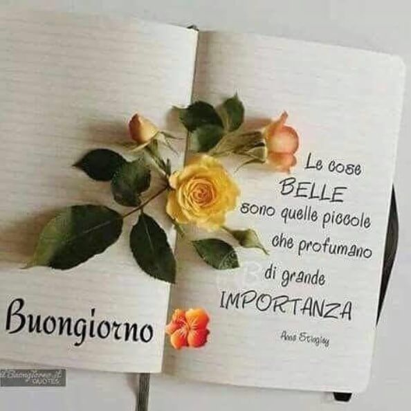 Frasi sul buongiorno buon giorno good morning night for Foto immagini buongiorno