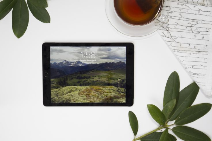 FREE Apple Ipad digital wallpaper download - stunning landscape and nature photos from Fifty Mountain, Glacier National Park in Montana by Mollie Tobias Creative