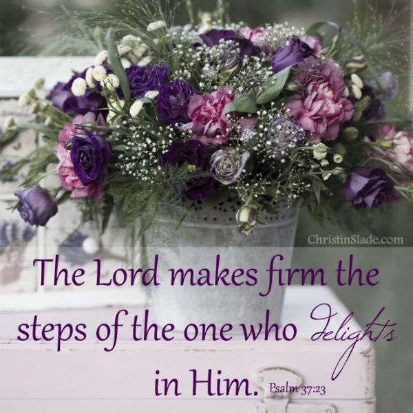 The Lord makes firm the steps of the one who delights in Him. Psalm 37:23