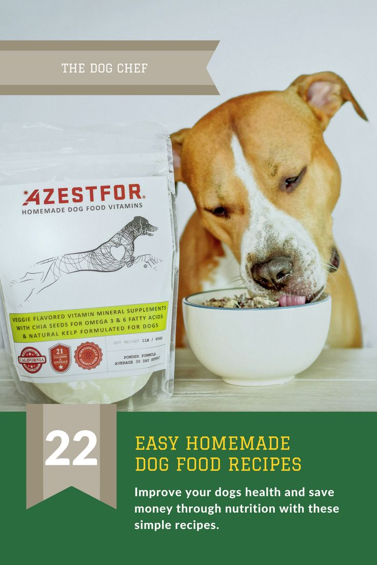 62 best homemade dog food recipes images on pinterest dog food how to make homemade dog food recipe grain free healthy simple forumfinder Gallery