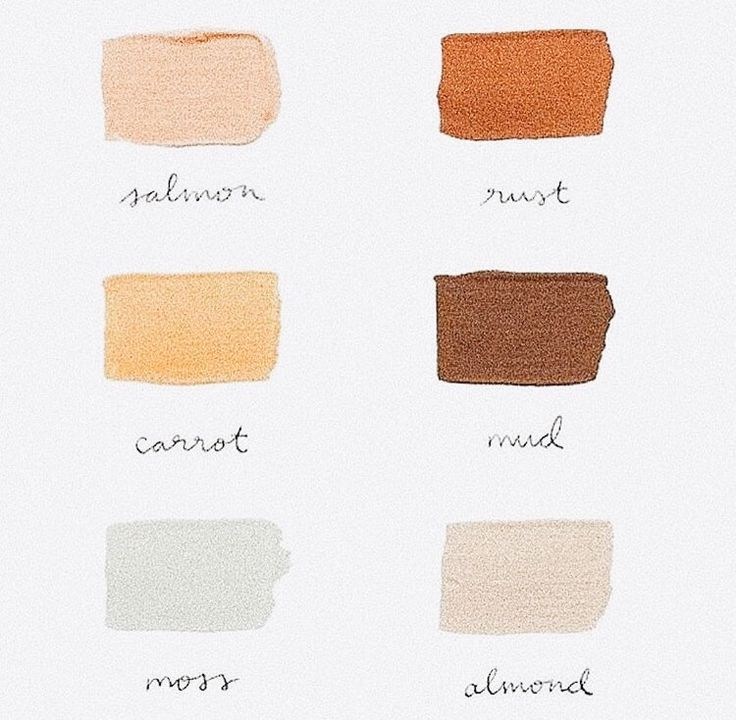 Salmon Rust Carrot Mud Moss Almond Color Schemes Colorpalette Warmcolors Earthy Color Palette Bedroom Colour Palette Color Palette