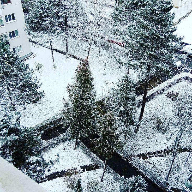 First #snow. #Cluj #Manastur #Klausenburg #Kolozsvár #Transilvania #Transylvania #Siebenbürgen #Winter #white