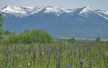 Lincoln, Montana | Southwest Montana Tourism Information | southwestmt.com
