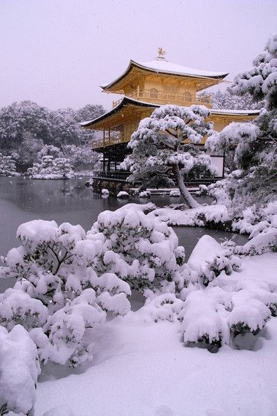 Winter in Kinkakuji in Kyoto #Japan