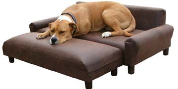dog beds and sofasMemories Foam, Beds Sofas, Dogs Beds, Pets Beds, Modern Pets, Dog Beds, Sofas Beds, Pets Sofas, Dogs Furniture