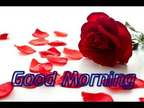 Good morning messages - Good morning love SMS