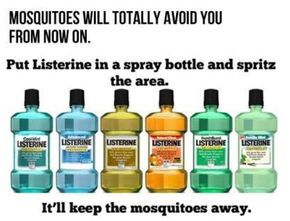 Mosquito repellant - I wonder if this really works? Sound easy enough to try!