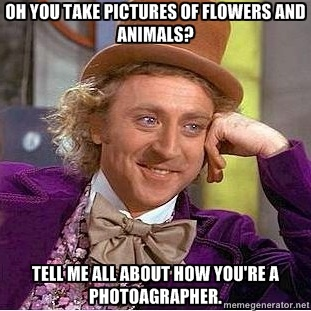 Ok, Willy :): Giggle, Quote, Funny Stuff, Even, Humor, Funnies, Things, Willy Wonka
