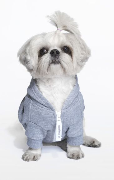 Doesn't get cuter than this OnePiece Dog Onesie