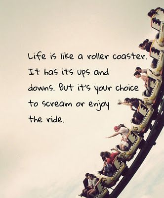 "lol this reminds me of a friend ""Life is like a roller coaster. It goes up and then down and then up and then down, then it turns around, then upside down, and before you know it, it's done and you never get the second ride!"""