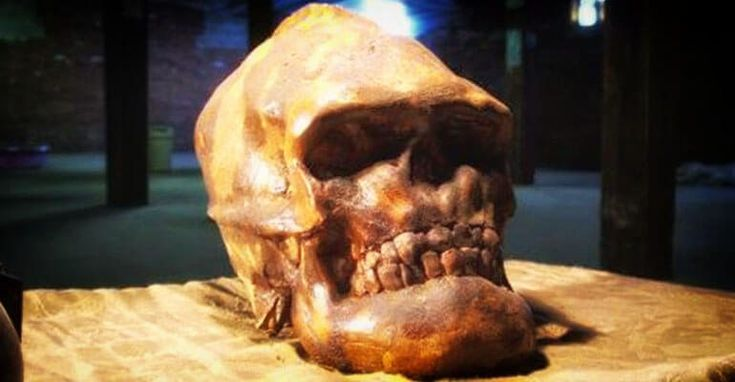 Evidence of Lost Race of Cannibalistic Red Haired Giants Discovered in Nevada