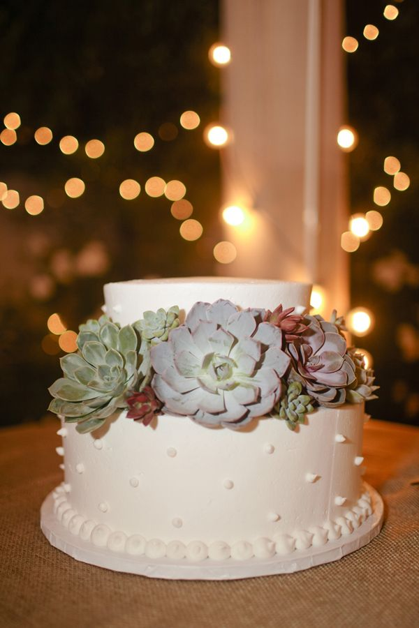 Peach And Pink Backyard Wedding Cakes Succulent